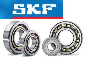 SKF-1 (1)